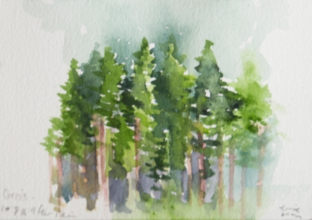 Louise McClary | England Title: Corris 10/8/18 after 9am Watercolour Image size: 10x14cm Framed: 22x26cm Price: £80 each or 3 for £210