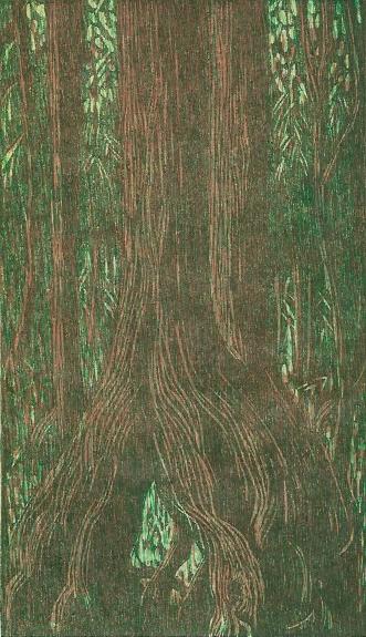 Pamela Dodds | Canada Title: Hemlock Grove I Medium: woodcut on paper Dimensions: 30 x 21cm Price: £110 unframed