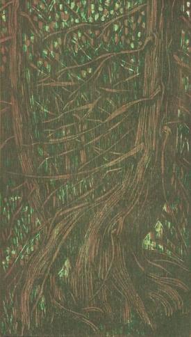 Pamela Dodds | Canada Title: Hemlock Grove V Medium: woodcut on paper Dimensions: 30 x 21cm Price: £110 unframed