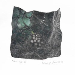 "Artist: Laura Bennett | USA Title: Found Eggs II Size: 6""x8"" Medium: Polaroid transfer on Archival Paper Price: £70"