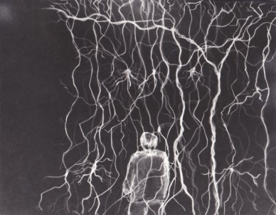 "Martha Orbach | Scotland Horizon I Drawn Photogram Paper size: 8x10"" Price: £65"
